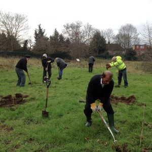 clearing ground for planting