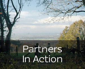 Partners In Action