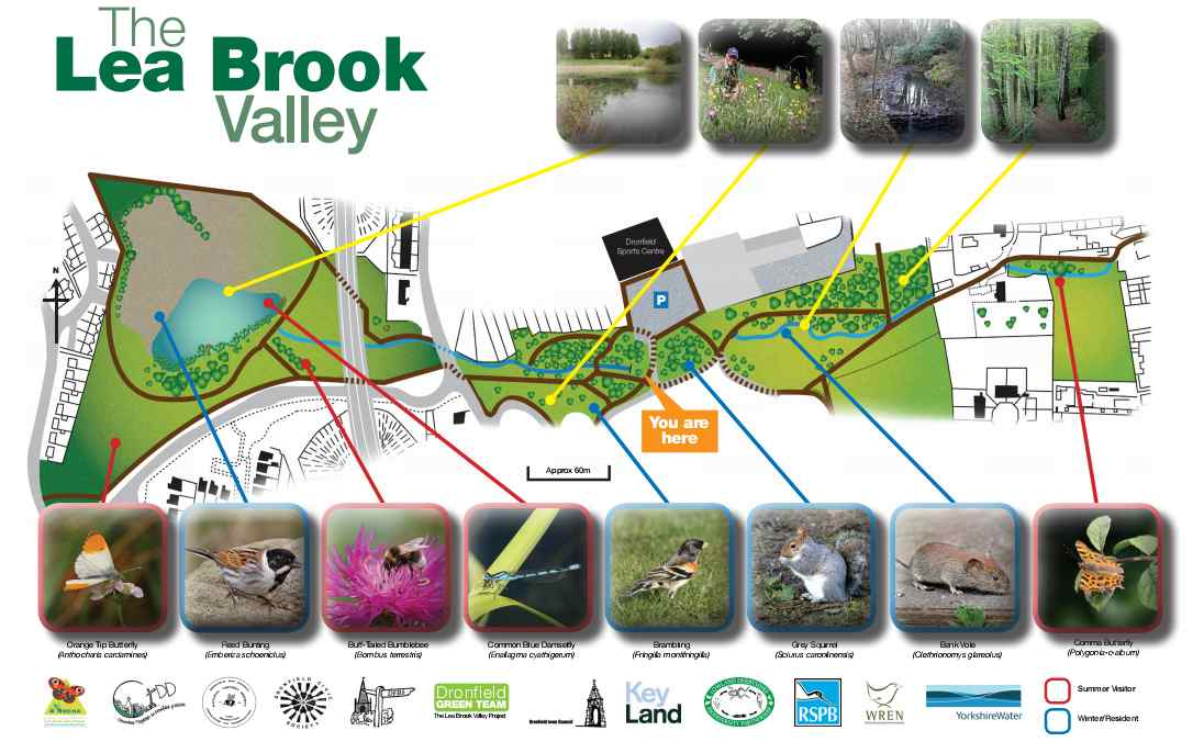 Lea Brook Valley