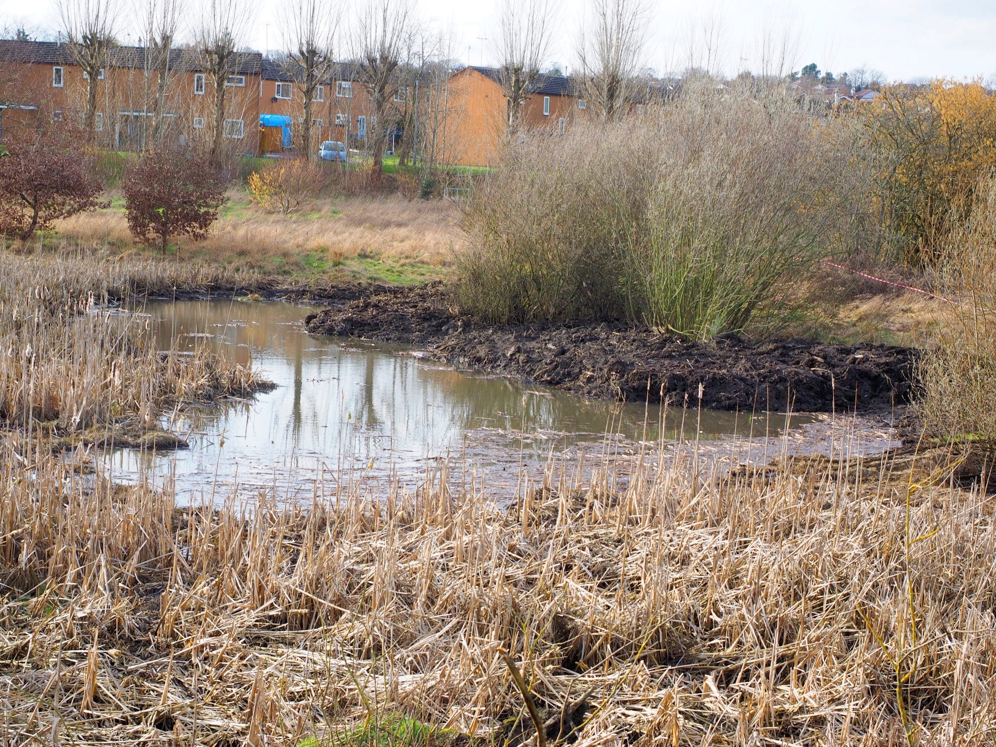 Large Pond complete March 2019. Photo by Norman Crowson